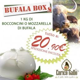 MINI BUFALA BOX
