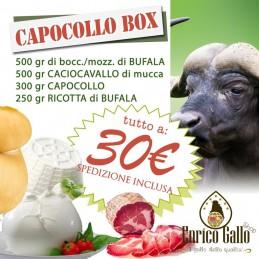 CAPOCOLLO BOX